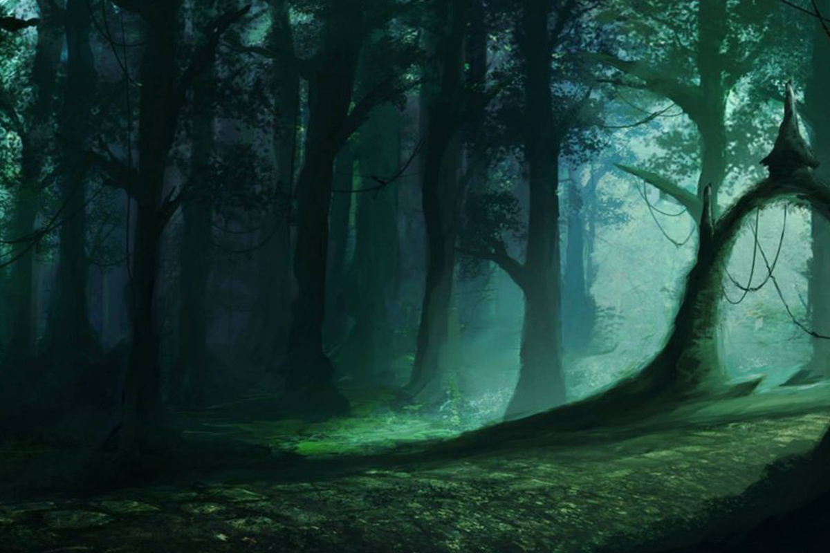 100 Interesting Forest Locations